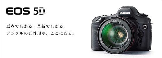 main2.jpg